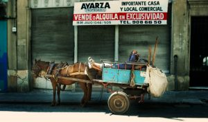Man resting in horse drawn cart, Montevideo, Uruguay.